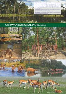 18-Chitwan-National-Park
